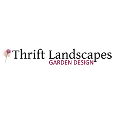 Thrifts landscapes