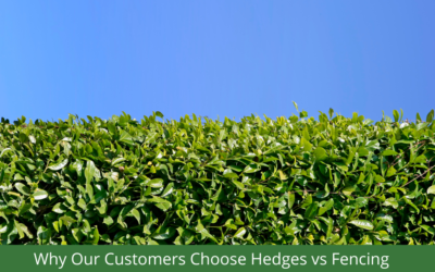 Why our Customers Choose Hedges vs Fences