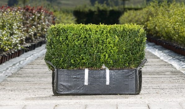 Instant Hedge Ready Bag